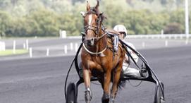 Comment choisir un cheval pour un pari ?